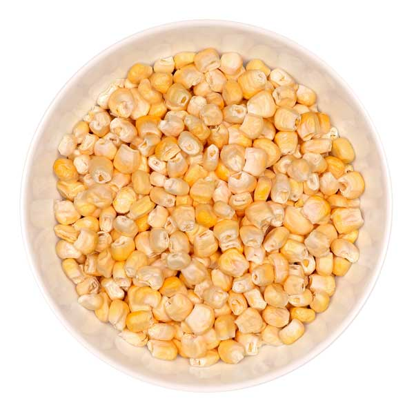 corn600.jpg